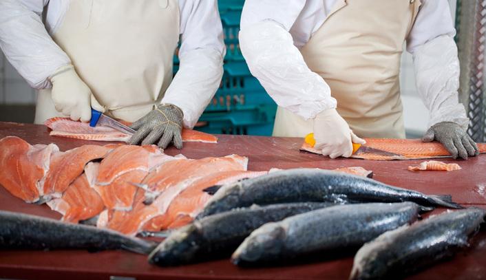 fiskebilen fra møre på østlandet